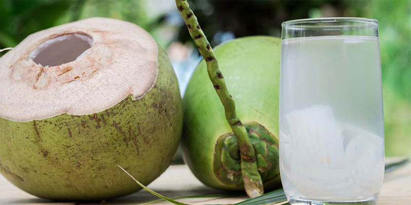 Coconut Drink is Rich in minerals-amino acids-electrolytes