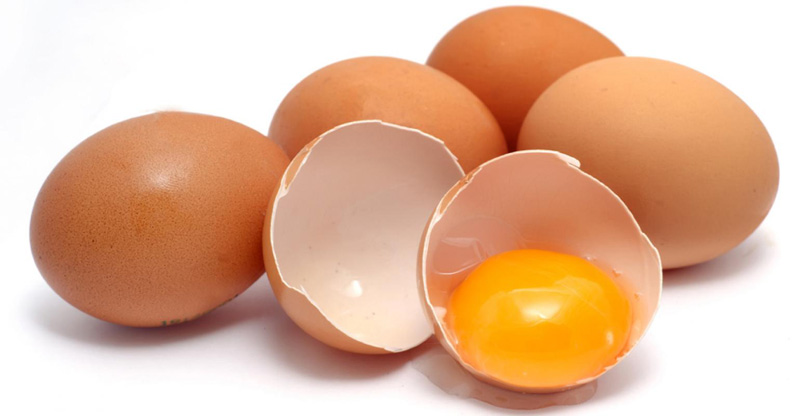 Eggshell Membrane Not a Waste but full of Protein and Nutritions