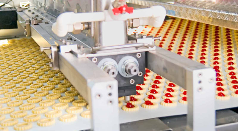Food Processing Equipment Gives You Healthy Products to Eat