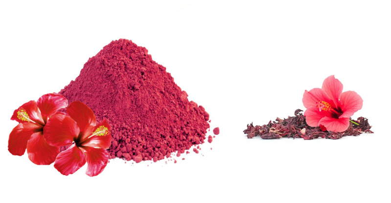 Hibiscus Flower Powder is a Remedy for Many Problems