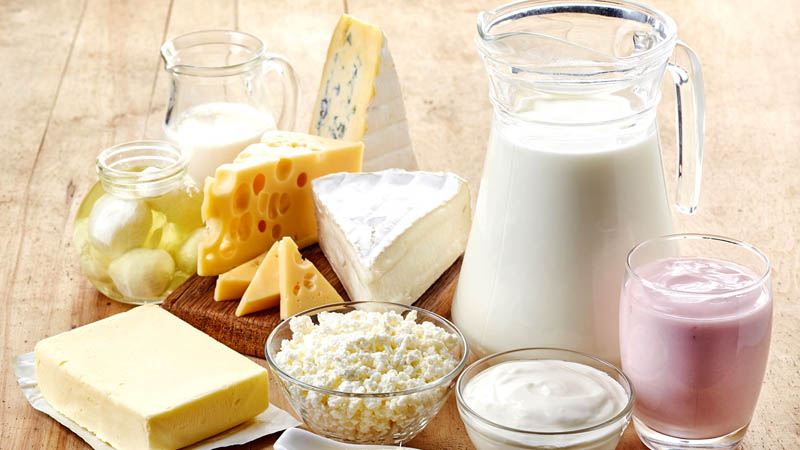 Vegan Cheese-Plant Based Cheese Replacement More Healthy