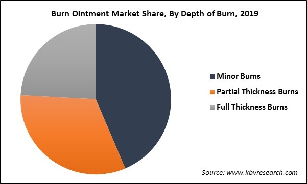 Burn Ointment Market Share