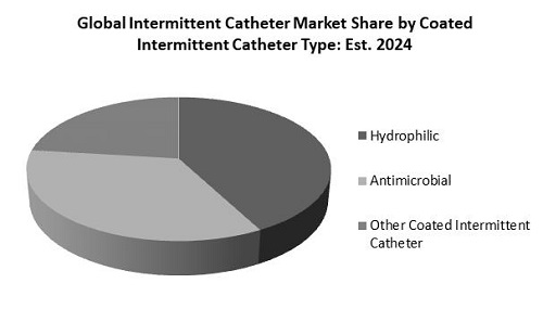 Intermittent Catheter Market Share