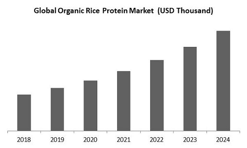 Organic Rice Protein Market Size