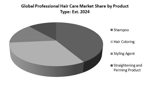 Professional Hair Care Market Share