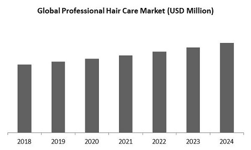 Professional Hair Care Market Size
